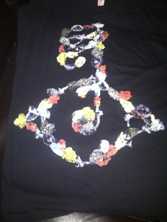 Bjork T shirt