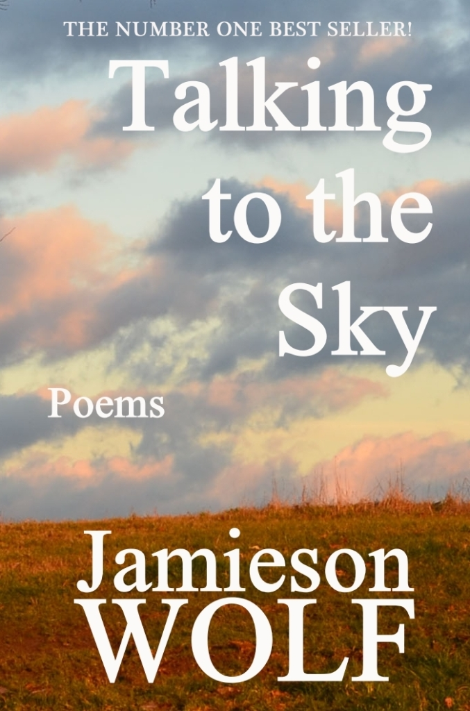 Talking to the Sky best seller