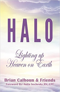 Halo book cover