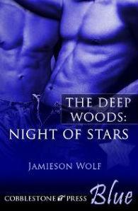 Nightofstars-cover.jpg